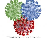 O Impacto da Pandemia Coronavírus no Ecossistema da Empresa Familiar