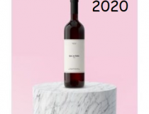 2020: O ANO DO IMPOSSÍVEL